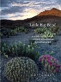 Little Big Bend Common, Uncommon, and Rare Plants of Big Bend National Park