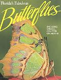Florida's Fabulous Butterflies & Moths