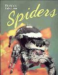 Florida's Fabulous Spiders (and Their Relatives)