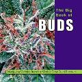 Big Book of Buds Marijuana Varieties from the World's Great Seed Breeders