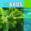 Big Book Of Buds More Marijuana Varieties From The World's Great Seed Breeders