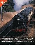7 Books in 1 The Railway Children, Five Children and It, The Phoenix and the Carpet, The Sto...