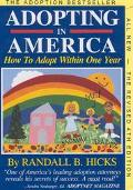 Adopting in America How to Adopt Within One Year