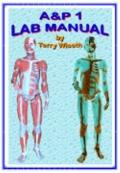 and P 1 Lab Manual