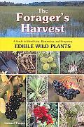 Forager's Harvest A Guide to Identifying, Harvesting, And Preparing Edible Wild Plants