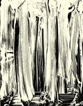 Ex Libris by Robert Janitz