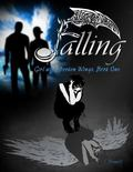 Falling : Girl with Broken Wings