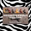 African Big 6 Safari Videobook