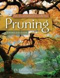 Illustrated Guide to Pruning