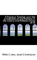 A Practical Treatise upon the Jurisdiction of and Practice in the County and Probate Courts ...