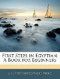 First Steps in Egyptian: A Book for Beginner