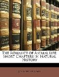 Romance of Animal Life : Short Chapters in Natural History