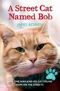 Street Cat Named Bob : And How He Saved My Life