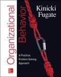 Organizational Behavior : A Practical, Problem-Solving Approach