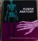 Human Anatomy Custom Edition