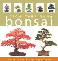 Grow Your Own Bonsai