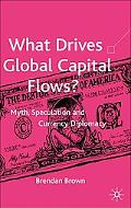 What Drives Global Capital Flows? Myth, Speculation And Currency Diplomacy