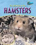 Wild Side Of Hamsters