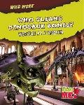 Who Cleans Dinosaur Bones? : Working at a Museum