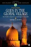 Gods in the Global Village: The World's Religions in Sociological Perspective (Sociology for a Ne