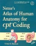 Netter's Atlas of Human Anatomy for Cpt Coding