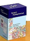 Netter's Physiology Flash Cards (Netter Basic Science)