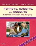 Ferrets, Rabbits, and Rodents : Clinical Medicine and Surgery