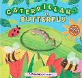 Caterpillar to Butterfly A Colorful Adventure