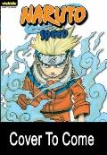 Naruto Vol. 14 : Chapter Book