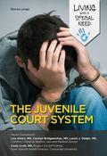Juvenile Court System