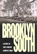 Brooklyn South A Story of New York