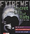 The Secret Life of Rats: Rise of the Rodents