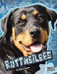 Rottweilers (Edge Books)
