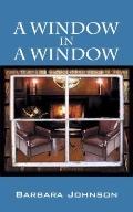 A Window in a Window