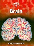 Brain: (2nd Edition) (Body Focus: Injury, Illness, and Health)