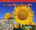 Sunflower's Life