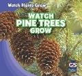 Watch Pine Trees Grow (Watch Plants Grow!)