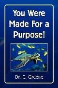 You Were Made For a Purpose!