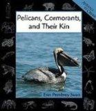 Pelicans, Cormorants, and Their Kin