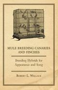 Mule Breeding Canaries and Finches - Breeding Hybrids for Appearance and Song