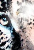Cuauhtmoc: Descendant of the Jaguar