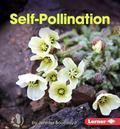 Self-Pollination