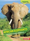 African Elephants : Massive Tusked Mammals