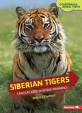 Siberian Tigers : Camouflaged Hunting Mammals