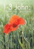 1-3 John : A Pentecostal Commentary