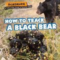 How to Track a Black Bear
