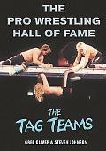 Pro Wrestling Hall Of Fame The Tag Teams