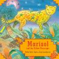 Marisol and the Yellow Messenger