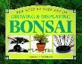 Step-by-Step Guide to Growing and Displaying Bonsai