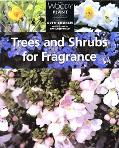 Trees and Shrubs for Fragrance